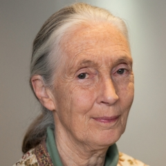 famous quotes, rare quotes and sayings  of Jane Goodall