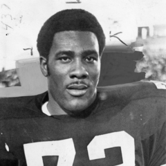 famous quotes, rare quotes and sayings  of Joe Greene