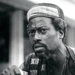 famous quotes, rare quotes and sayings  of Djibril Diop Mambety