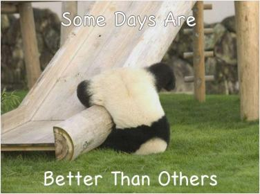 Some Days Are Better Than Others 162 Inspirational And Motivational